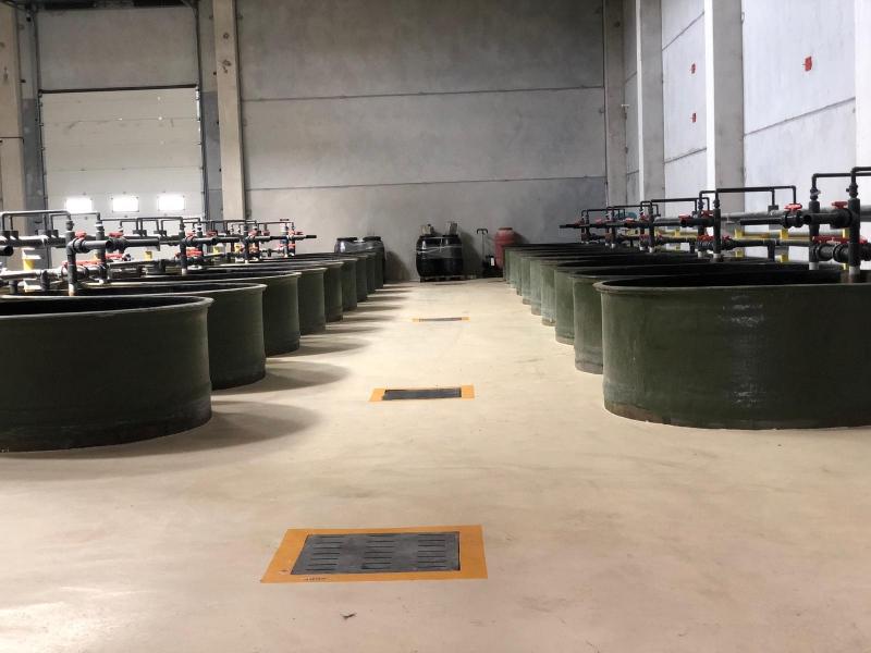 Ctp Polyester Zeytin Stoklama Tankları